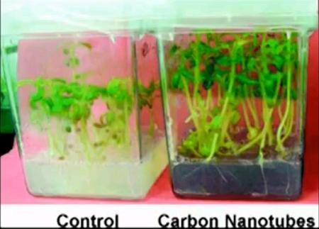 carbon nanotube growth.JPG
